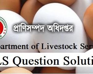 dls question solution