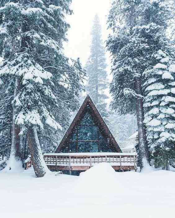 chalé na neve com telhado coberto