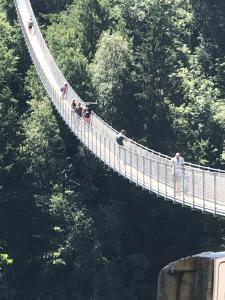 Ponte nel Cielo - Chaletluganomeer.nl
