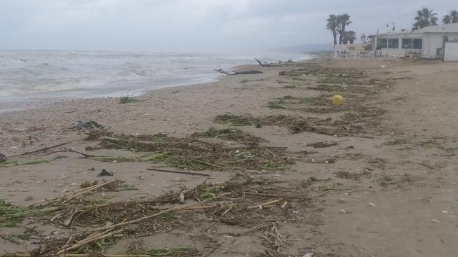 Pulizia delle spiagge dopo l'ondata di maltempo