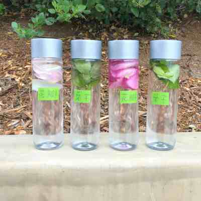 Parts of a Flower Sensory Bottles – A Nature Literacy Activity
