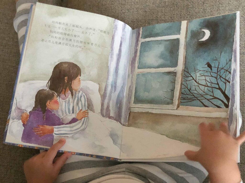 满月 (Mǎnyuè / Full Moon) book by 保冬妮