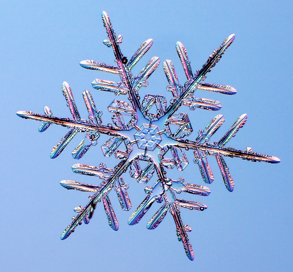 snowflake the symbol of winter different sizes infinite shapes