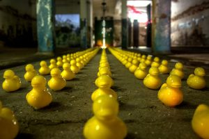 An army of rubber ducks