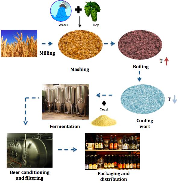 The mathematics of brewing - Chalkdust