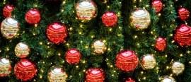 Christmas lights, trees and maths