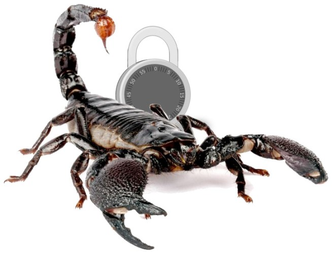 Scorpion in front of a locked padlock