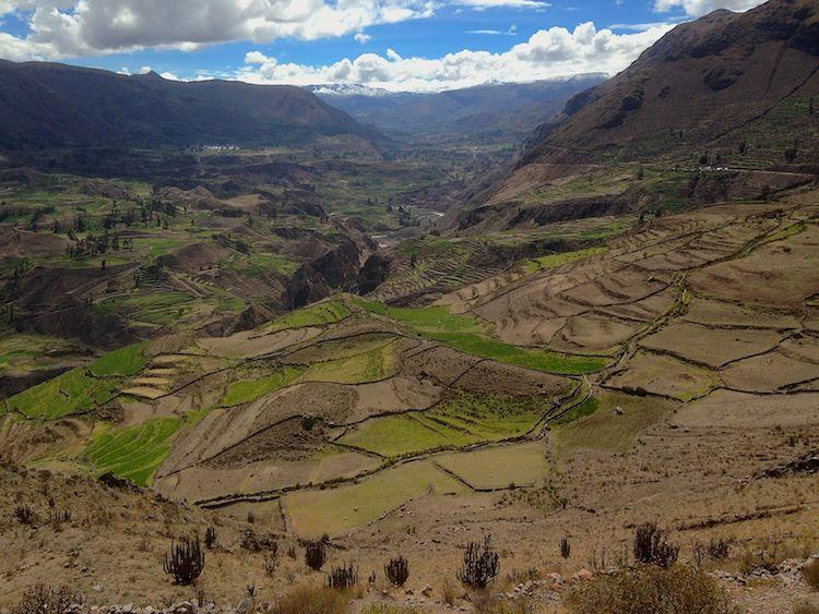 Chalkmarks Arequipa