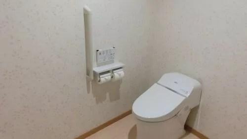 草津【スカイランドホテル栖風亭】ナチュラルモード・ラグジュアリールームのトイレ