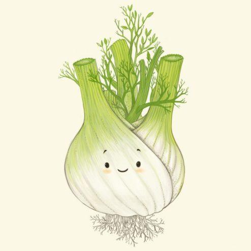 Illustration pour enfant - le fenouil