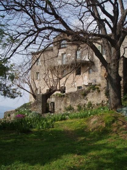 la maison vue depuis le jardin sous le tilleul
