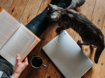 Đọc sách hay xem phim - đâu là cách học tốt nhất?