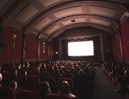 Thích điện ảnh thì nên làm nghề gì?
