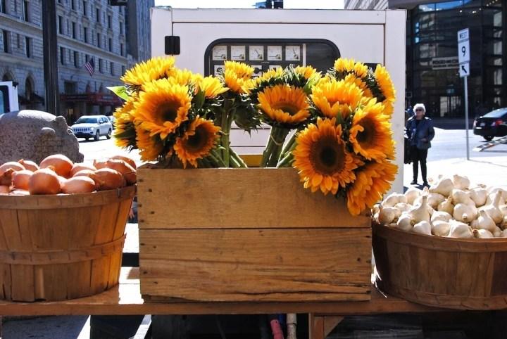 Copley Square Farmers Market, Boston, MA