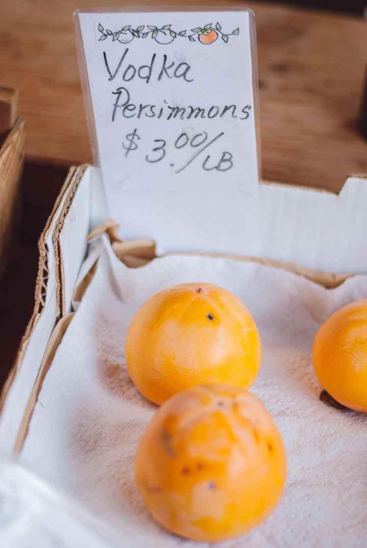 Mini Guide: Persimmon 101