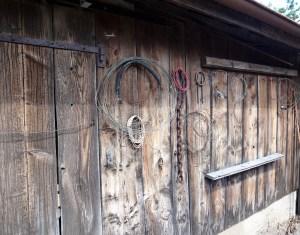 Barn wall Photo: PK Read
