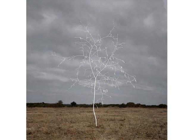 Smoke & Mirrors Heathland 2 (2013) Photo: Ellie Davies