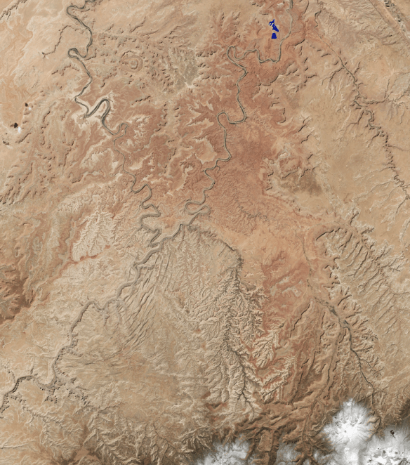 In the Needles District of Canyonlands National Park near the Colorado River. Image: NASA