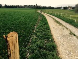 Fenced farmland in France