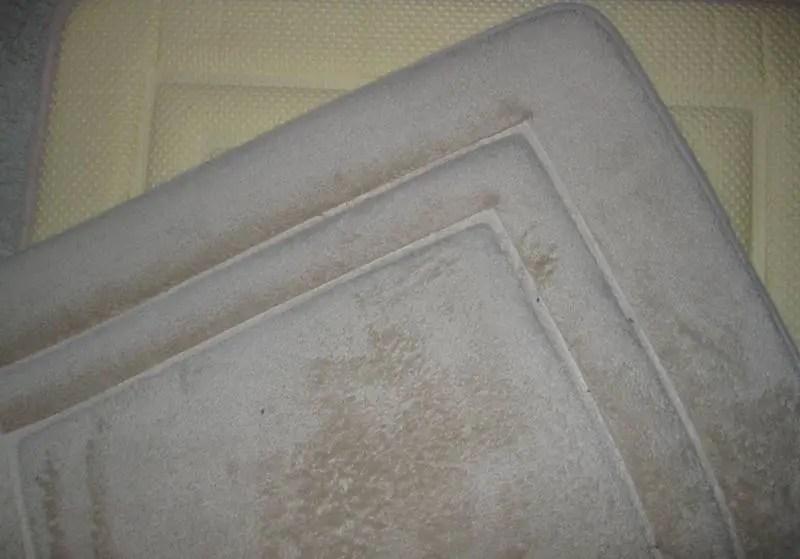 quick dog care tip -- memory foam bat mats