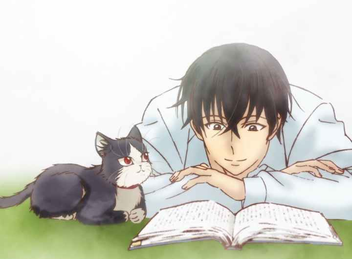 Sinopsis Anime My Roommate is a Cat