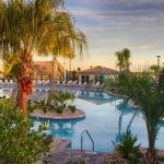 swimming pool at oasis championsgate