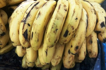 Avocado - Banana Shake