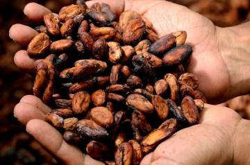 Delicious Cocoa for Pms Sufferers