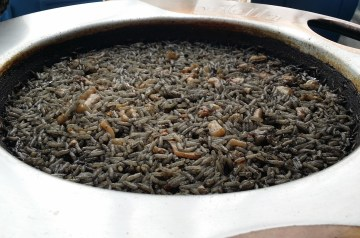 South Texas Spanish Rice