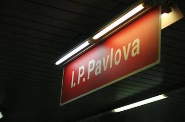 My N Z Pavlova