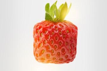 Strawberry Julius Copycat