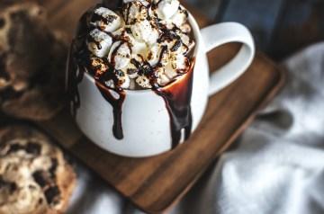 Chocolate Chip Dream Bars