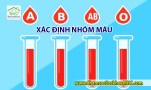 Blood Type Calculator xac dinh nhom mau