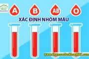 Xác định nhóm máu của bé và cha mẹ - Blood Type Calculator