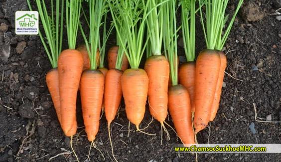 cong dung cua carot loi ich suc khoe cua carot mhc