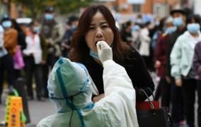 Tin tức điều tra nguồn gốc Covid-19 ở Vũ Hán mới nhất: Trung Quốc trả lời WHO  Lấy máu xét nghiệm tại nhà TPHCM | Xét nghiệm máu tại nhà TPHCM tin tuc covid 19 nguon goc covid 19