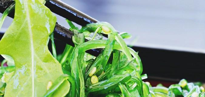 challenge algues