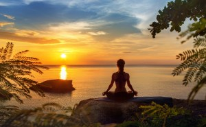 Relax a Bit and Enjoy a Meditation at Meditation Oasis