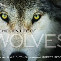 How Robert Redford Influenced Wolf Code (And Jim and Jamie Dutcher Too)