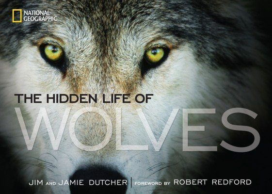 hidden-life-of-wolvesjpg-b25e25631f568db6