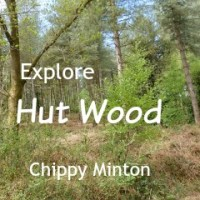 Delightful Hut Wood - Have You Been Yet?