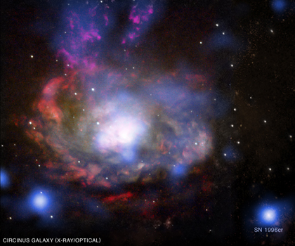 SN 1996cr