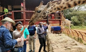 Image of Is Nairobi safe for tourists