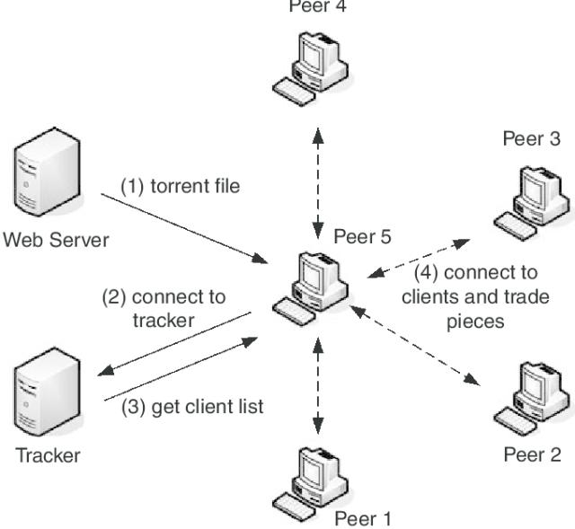 torrent network structure scheme