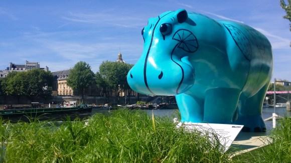 changement climatique, hippopotame du Nil sur la Seine