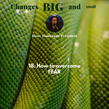 Cover Art for episode 18 How to overcome Fear on Changes Big and small podcast