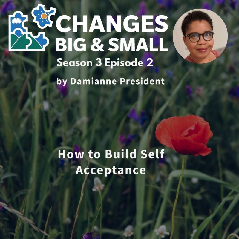 episode 64 How to build self acceptance cover art