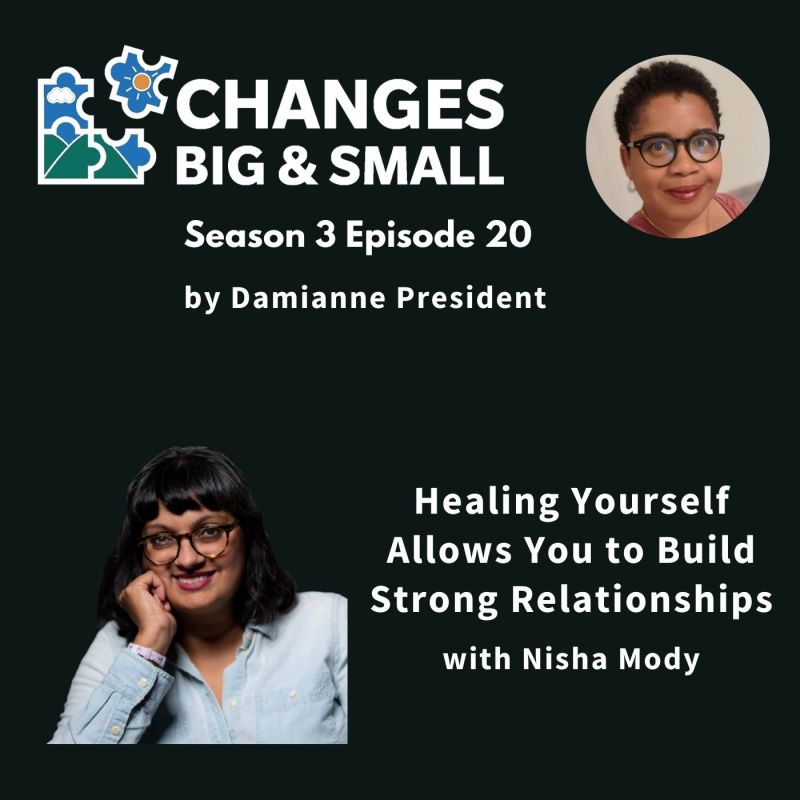 cover art of Healing Yourself podcast with Nisha Mody on CBaS