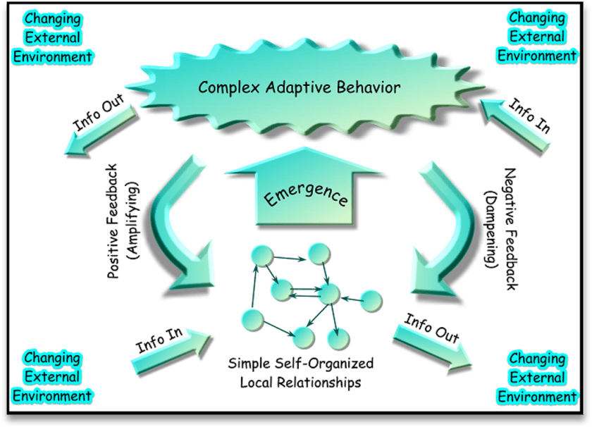 Standard Model Diagram of a Complex Adaptive System. Nothing Special in the Diagram.