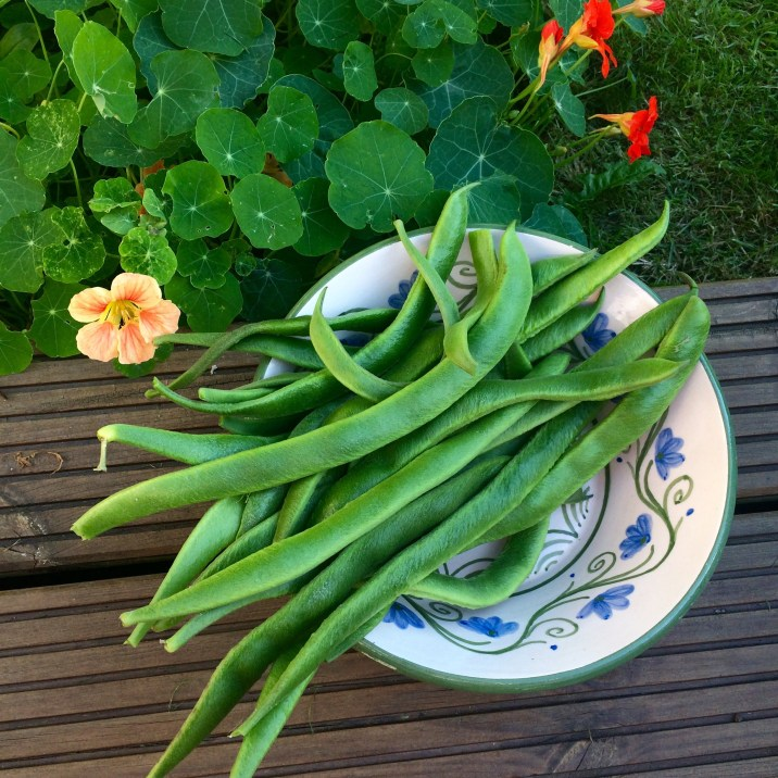 Home Grown Runner Beans